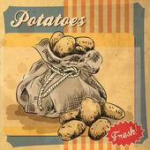 Vintage poster template for potato farm. — Stock Vector