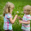 Two girl and a dandelion — Stock Photo