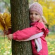 Girl with autumn leaves — Stock Photo #33351511