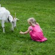 Stock Photo: Girl and goat