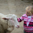 Stockfoto: Child and goat