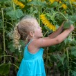 Girl and a sunflower — Stock Photo