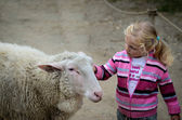 Child and the goat — Stock Photo