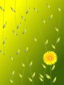 Flower greeting — Stock Vector