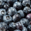 Bilberries — Stock Photo #40528609