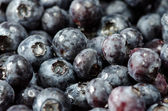 Bilberries — Stock Photo
