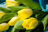 Tulipas amarelas — Fotografia Stock