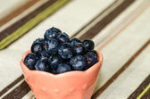Bilberries — Stockfoto