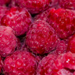 Rasberry — Stock Photo #41837699