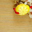 Easter flower and egg — Stock Photo