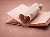 Passport pages in shape of heart — Stock Photo