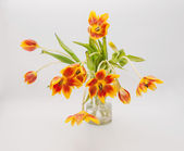 Fully open red yellow tulips in vase — Stock fotografie