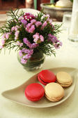 Macaron in close up — Stock Photo
