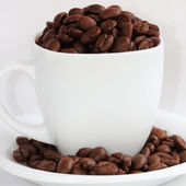 Coffee bean in the cup — Stock Photo