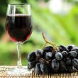 Blue grape fruit juice — Stock Photo