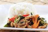 Stir Fried Chicken with Holy Basil and steamed rice ( — Stock Photo