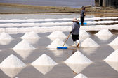 Workers in salt pans, Thailand. — Foto Stock