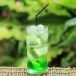 Green fruit soda — Stock Photo #41797405