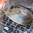Grill horseshoe crab on Stove — Stock Photo #42305483