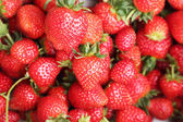 Set in a box of strawberries  — Foto Stock