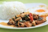 Kuřecí panang kari s rýží — Stock fotografie