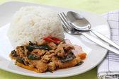 Kyckling panang curry med ris — Stockfoto