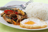 Chicken panang curry with rice — Stock Photo