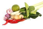 Ingredient for Tomyam set (Thai food)  — Stock Photo