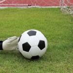 Goalkeeper's hands reaching ball — Stock Photo #49691963