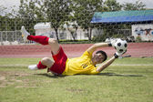 Goalkeeper catches the soccer ball  — Stockfoto