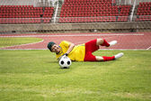Goalkeeper catches the soccer ball  — Photo