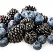 Blueberries on white — Stock Photo #33973207