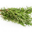 Rosemary isolated on white  — Stock Photo