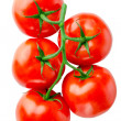 Tomato isolated on white — 图库照片