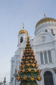 Cristmas tree near the Christ The Saviour cathedrale — Stock Photo