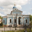 Vladimir Icon of Our Lady church — Stock Photo #34117841