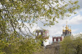 Novodevichiy monastery towers and chirch — Stock Photo