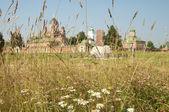 SPASO-BORODINSKY (Saver in Borodino) convent, focus on the gras — Stock Photo