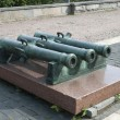 The old cannons — Stock Photo