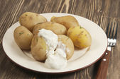 Boiled Young potatoes — Stock Photo