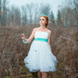 Redhead bride Tiffany in the autumn field — Stock fotografie