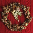 Christmas fir wreath — Stock Photo