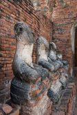 Satır berbat Buda heykeli wat chai wattanaram, ayutthaya, Tayland — Stok fotoğraf