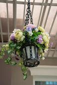Hanging basket of flowers — Stock Photo