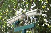 Security Camera in the Garden, CCTV Camera — Stock Photo