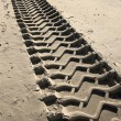 Tire tracks on a beach — 图库照片