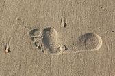 Human trace on sand — Stock Photo