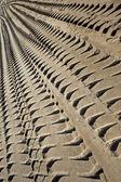 Tire tracks on a beach — Stock Photo