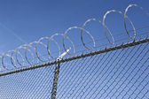 Fence with a barbed wire — Stock Photo