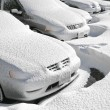Vehicles covered with snow — Foto de Stock